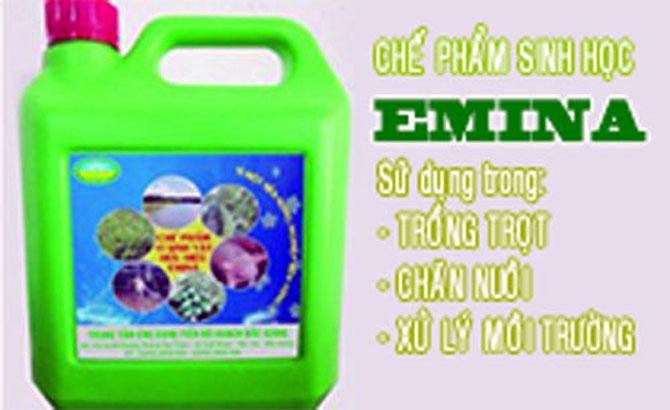Emina là chế phẩm vi sinh vật hữu hiệu do Viện Sinh học Nông nghiệp - Học viện Nông nghiệp Việt Nam phân lập và sản xuất theo kết quả của một dự án cấp bộ. Chế phẩm này được Cục Chăn nuôi công nhận tiến bộ kỹ thuật, công nghệ mới và Bộ Nông nghiệp và Phát triển nông thôn đưa vào danh mục sản phẩm xử lý, cải tạo môi trường.  Giúp xử lý làm trong lành môi trường ( khử mùi hôi thối chuồng trại, xử lý làm sạch nước thải, môi trường chăn nuôi, thủy sản)  Tham gia vào quá trình phân giải phế thải nông nghiệp dùng ủ phân, chế tạo phân bón hữu cơ chất lượng cao, giúp cải tạo lý hóa tính của đất  Ngăn cản dịch bệnh cho cây trồng, vật nuôi, xua đuổi côn trùng  Làm tăng năng suất, phẩm chất cây trồng, vật nuôi, tạo sản phẩm sạch, an toàn